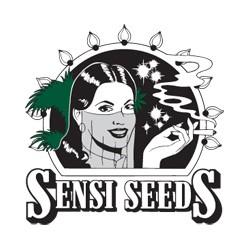 Sensi Seeds Guerrilla's Gusto 10ks / stand.