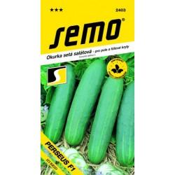 SEMO Okurka salátová PERSEUS F1   1.3 g