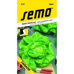 SEMO Salát hlávkový FARAON   0.6 g