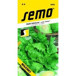 SEMO Salát hlávkový MAXIMO   0.5 g
