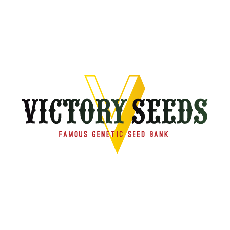 Victory Seeds, Bubblegum, 10 ks, Feminized