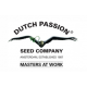 Dutch Passion Strawberry Cough - feminizovaná 5ks