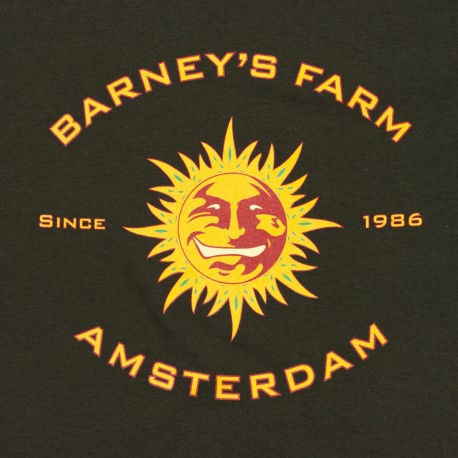 Barney´s Farm Morning Glory 10ks, feminizovaná