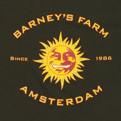 Barney´s Farm Night Shade 5ks, feminizovaná