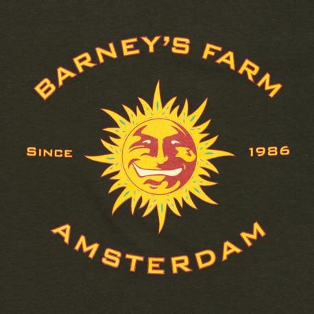 Barney´s Farm Tangerine Dream 5ks, feminizovaná
