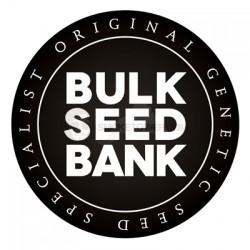 BULKSEEDBANK Original Orange Bud 5 ks Feminized